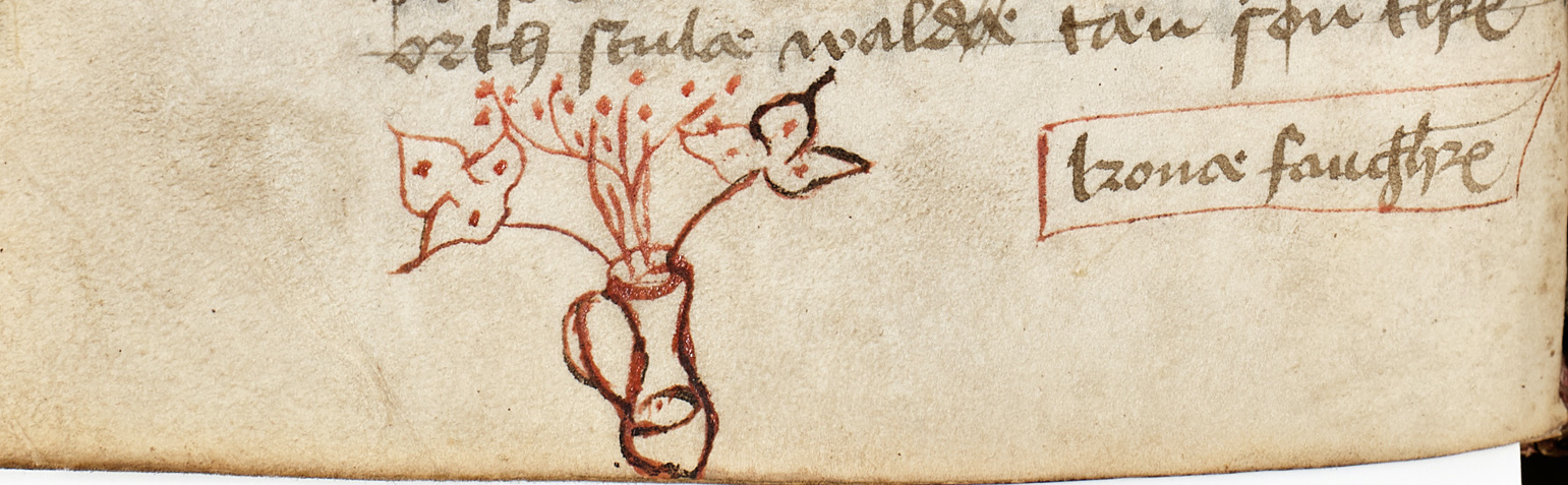 A drawing of a vase with lilies